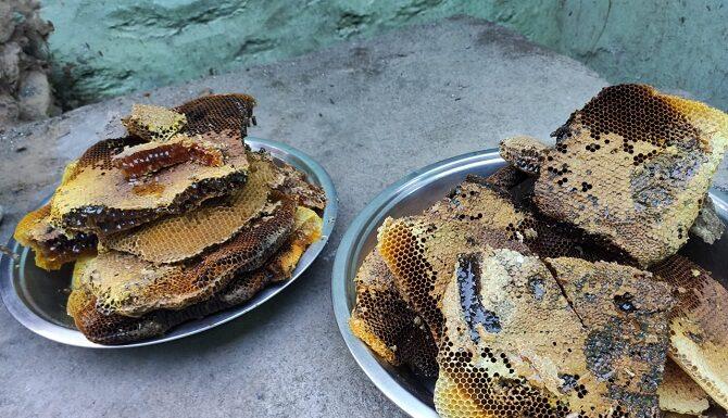 benefits-of-honey-in-hindi